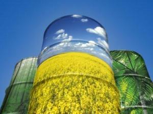bzp-net-ua-biodiesel_jpg_500x500_q85