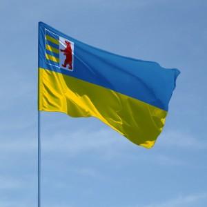 flag-zakarpatskoy-oblasti_b